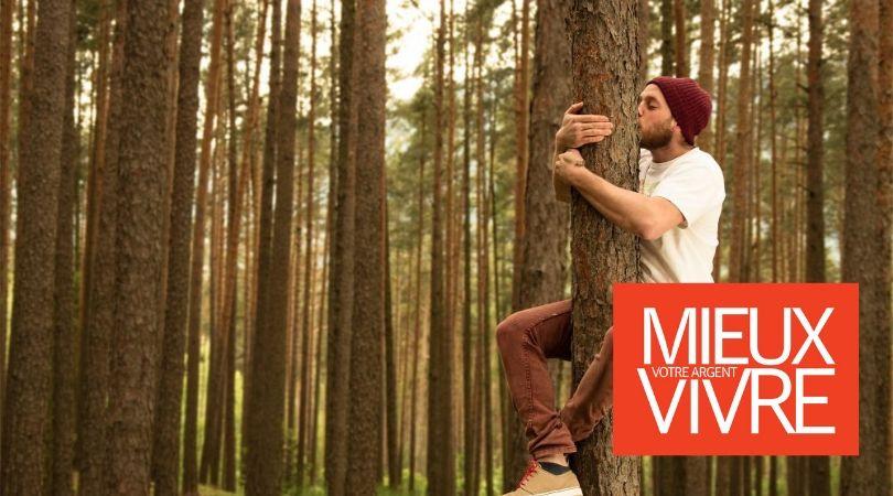 EcoTree : la start-up qui vend des arbres pour sauver les forêts et vous faire gagner de l'argent