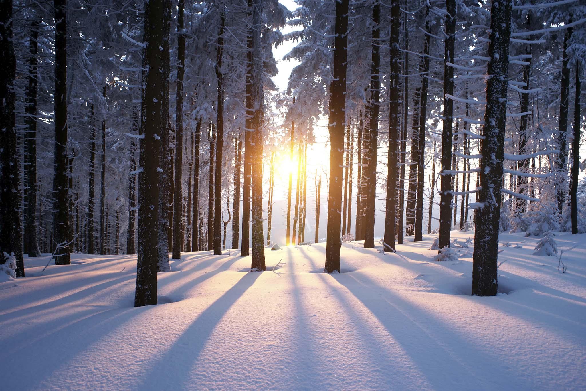 winterimage_background
